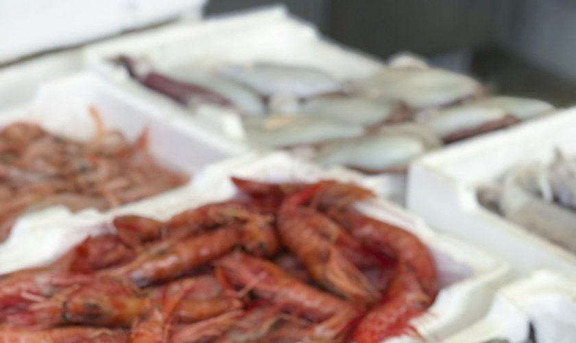 Mercato del pesce Gallipoli